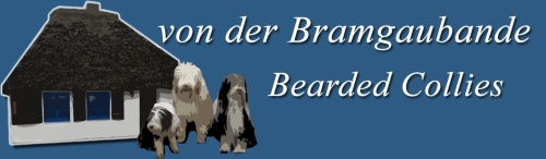 Banner Bearded Collies von der Bramgaubande