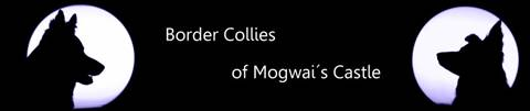 Banner Border Collies of Mogwai's Castle
